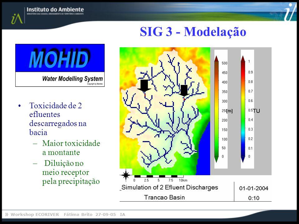 Workshop ECORIVER Fátima Brito 27-09-05 IA SIG 3 - Modelação Toxicidade de 2 efluentes descarregados na bacia –Maior toxicidade a montante – Diluição