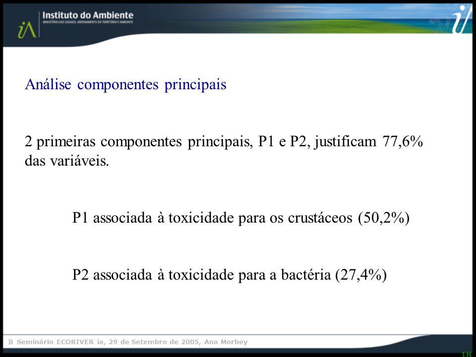 Seminário ECORIVER ia, 29 de Setembro de 2005, Ana Morbey 18 Análise componentes principais 2 primeiras componentes principais, P1 e P2, justificam 77,6% das variáveis.