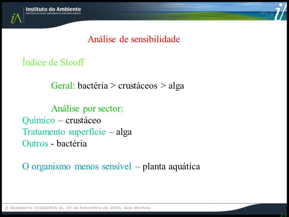 Seminário ECORIVER ia, 29 de Setembro de 2005, Ana Morbey 23 Análise de sensibilidade Índice de Slooff Geral: bactéria > crustáceos > alga Análise por sector: Químico – crustáceo Tratamento superfície – alga Outros - bactéria O organismo menos sensível – planta aquática