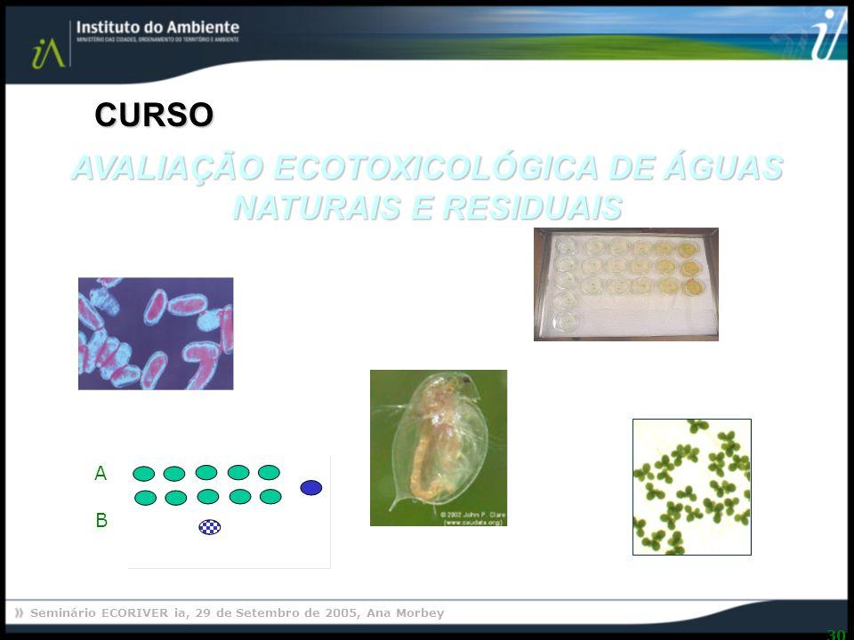 Seminário ECORIVER ia, 29 de Setembro de 2005, Ana Morbey 30 AVALIAÇÃO ECOTOXICOLÓGICA DE ÁGUAS NATURAIS E RESIDUAIS CURSO 1 2 3 4 5 A B