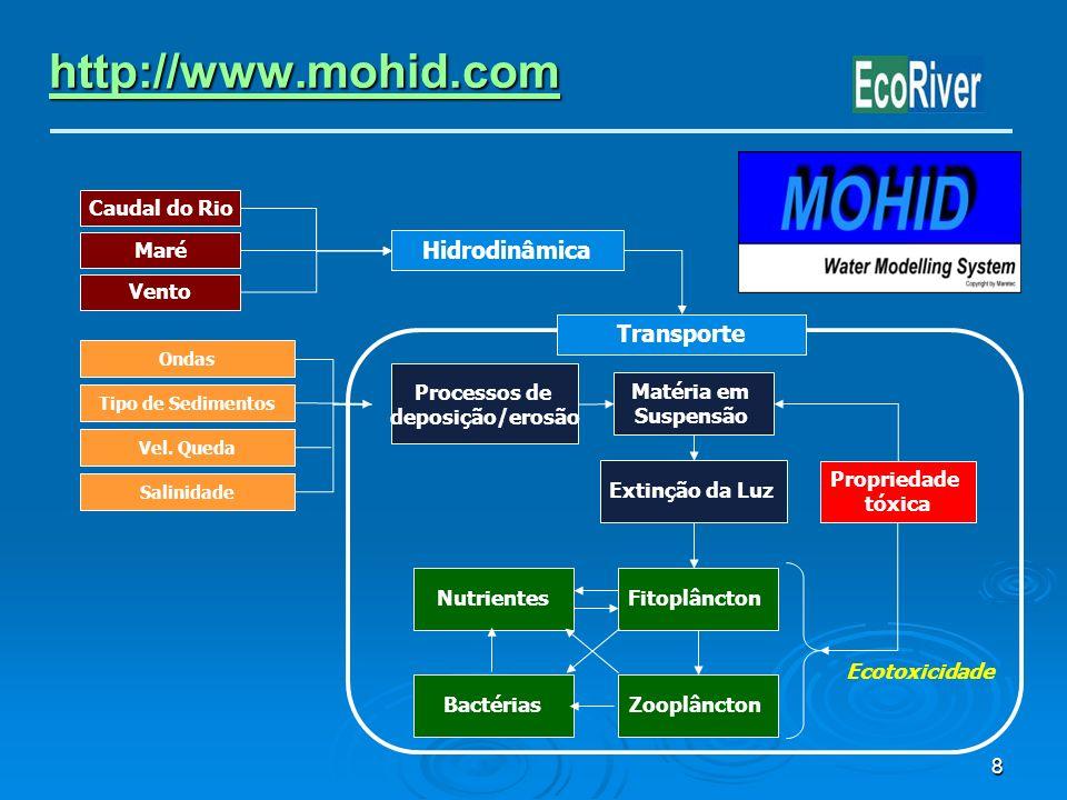 8 http://www.mohid.com Ondas Tipo de Sedimentos Vel. Queda Salinidade Transporte Processos de deposição/erosão Extinção da Luz Matéria em Suspensão Fi