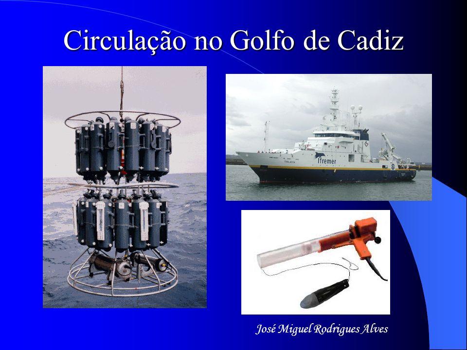 Transportes obtidos com o modelo inverso no Golfo de Cádis Julho 1999Julho 2000 Novembro 2000Julho 2001