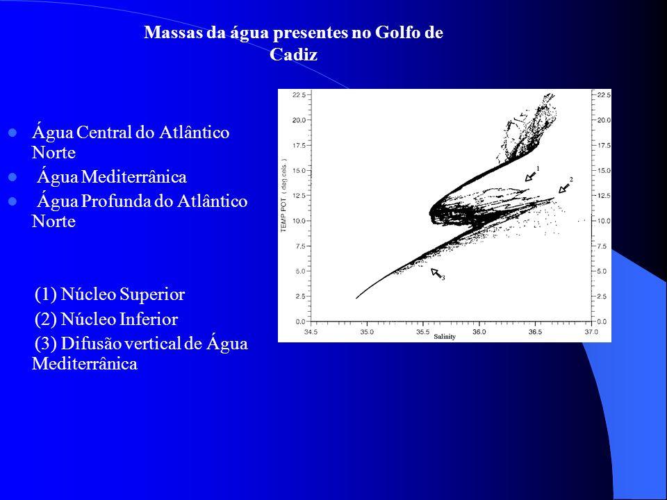 Distribuição da salinidade, temperatura potencial e densidade ao longo da secção meridional 6º15 W SalinidadeTemperatura potencial Densidade Salinidade na região mais profunda 38.2 Temperatura na região mais profunda 12.5 ºC Máximo densidade γ0=28.6 kg.m -3