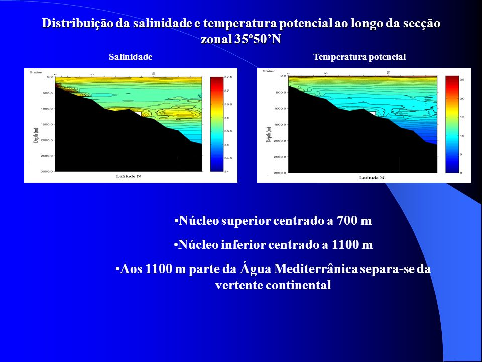 SalinidadeTemperatura potencial Núcleo superior centrado a 700 m Núcleo inferior centrado a 1100 m Aos 1100 m parte da Água Mediterrânica separa-se da
