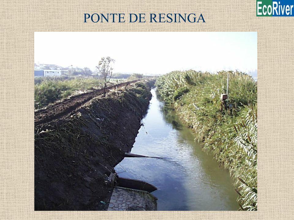 PONTE DE RESINGA
