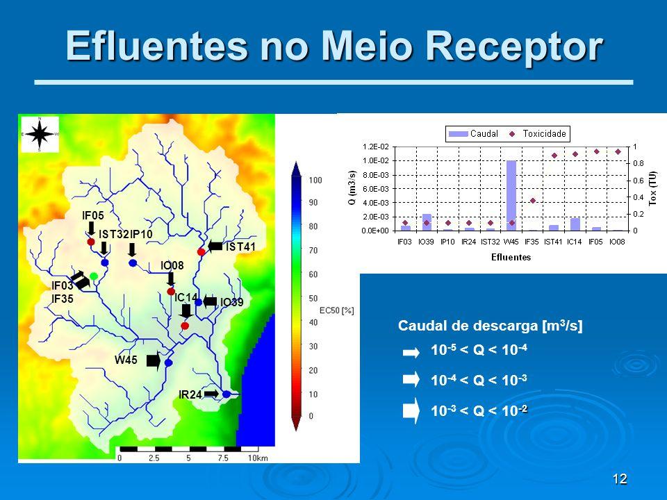 12 Efluentes no Meio Receptor IF05 IST32 IF03 IF35 IP10 W45 IST41 IO08 IO39 IC14 IR24 10 -5 < Q < 10 -4 10 -4 < Q < 10 -3 -2 10 -3 < Q < 10 -2 Caudal