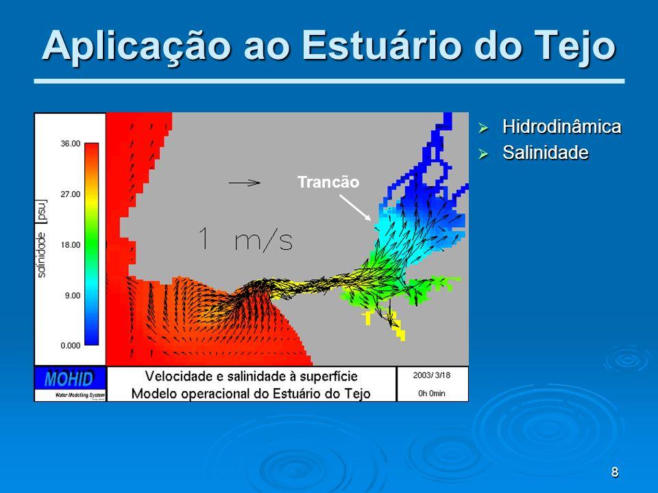 8 Aplicação ao Estuário do Tejo Trancão Hidrodinâmica Hidrodinâmica Salinidade Salinidade