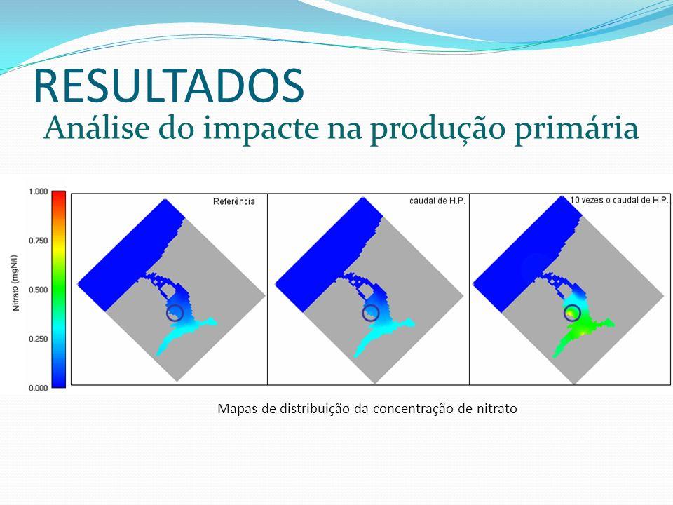 Mapas de distribuição da concentração de nitrato RESULTADOS Análise do impacte na produção primária