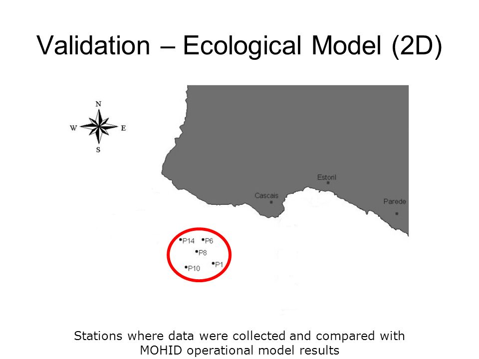 Validation – Ecological Model (2D) Stations where data were collected and compared with MOHID operational model results