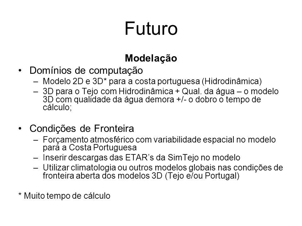 Futuro Modelação Domínios de computação –Modelo 2D e 3D* para a costa portuguesa (Hidrodinâmica) –3D para o Tejo com Hidrodinâmica + Qual. da água – o