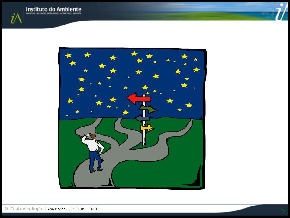 Ecotoxicologia | Ana Morbey- 27.01.05 - INETI 5