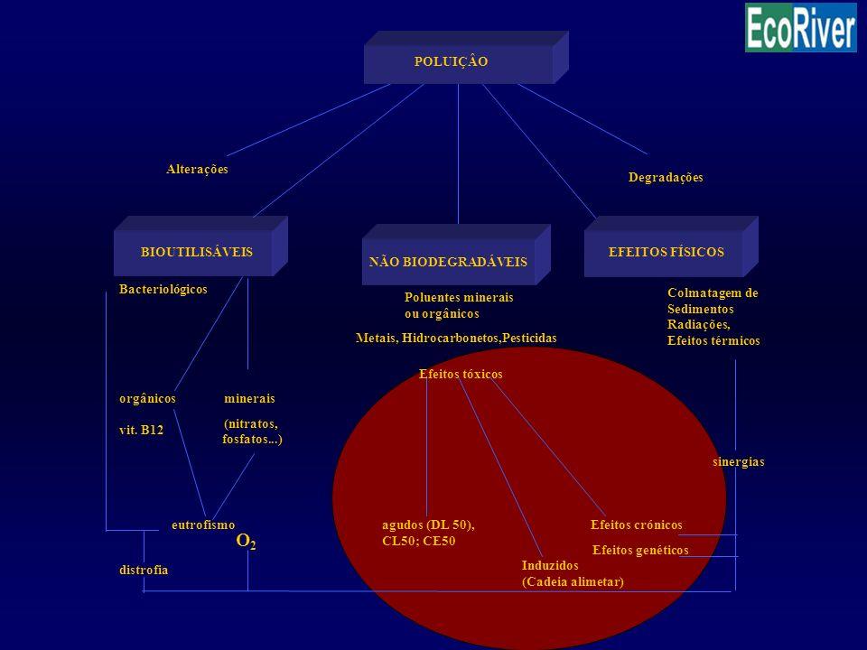 Colmatagem de Sedimentos Radiações, Efeitos térmicos Degradações BIOUTILISÁVEIS Bacteriológicos Poluentes minerais ou orgânicos orgânicosminerais vit.