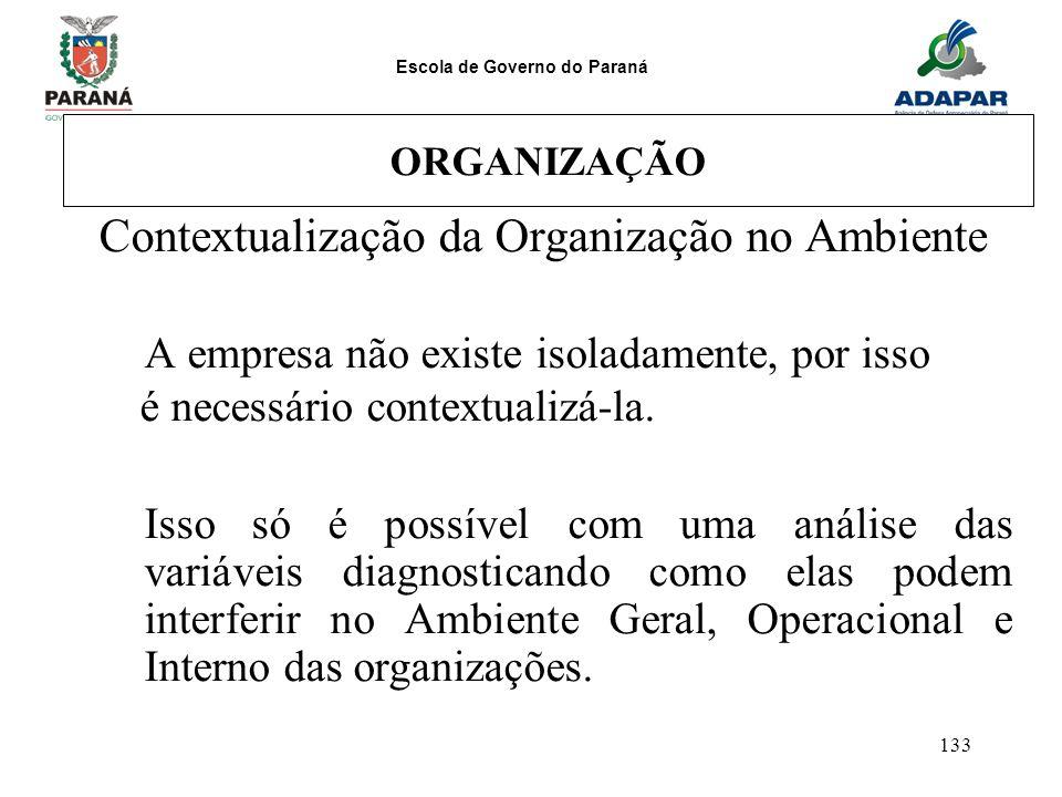 Escola de Governo do Paraná 133 ORGANIZAÇÃO Contextualização da Organização no Ambiente A empresa não existe isoladamente, por isso é necessário conte