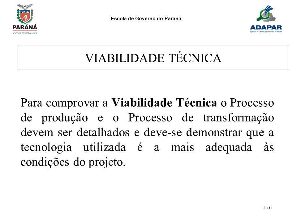 Escola de Governo do Paraná 176 VIABILIDADE TÉCNICA Para comprovar a Viabilidade Técnica o Processo de produção e o Processo de transformação devem se
