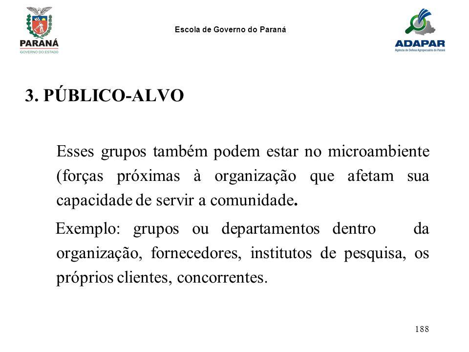 Escola de Governo do Paraná 188 3. PÚBLICO-ALVO Esses grupos também podem estar no microambiente (forças próximas à organização que afetam sua capacid