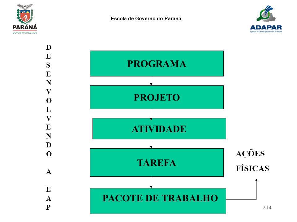 Escola de Governo do Paraná 214 PROGRAMA PROJETO ATIVIDADE TAREFA DESENVOLVENDOAEAPDESENVOLVENDOAEAP PACOTE DE TRABALHO AÇÕES FÍSICAS