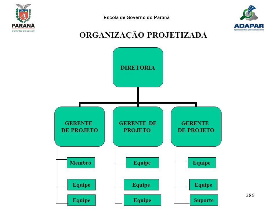 Escola de Governo do Paraná 286 DIRETORIA GERENTE DE PROJETO GERENTE DE PROJETO GERENTE DE PROJETO MembroEquipe SuporteEquipe ORGANIZAÇÃO PROJETIZADA