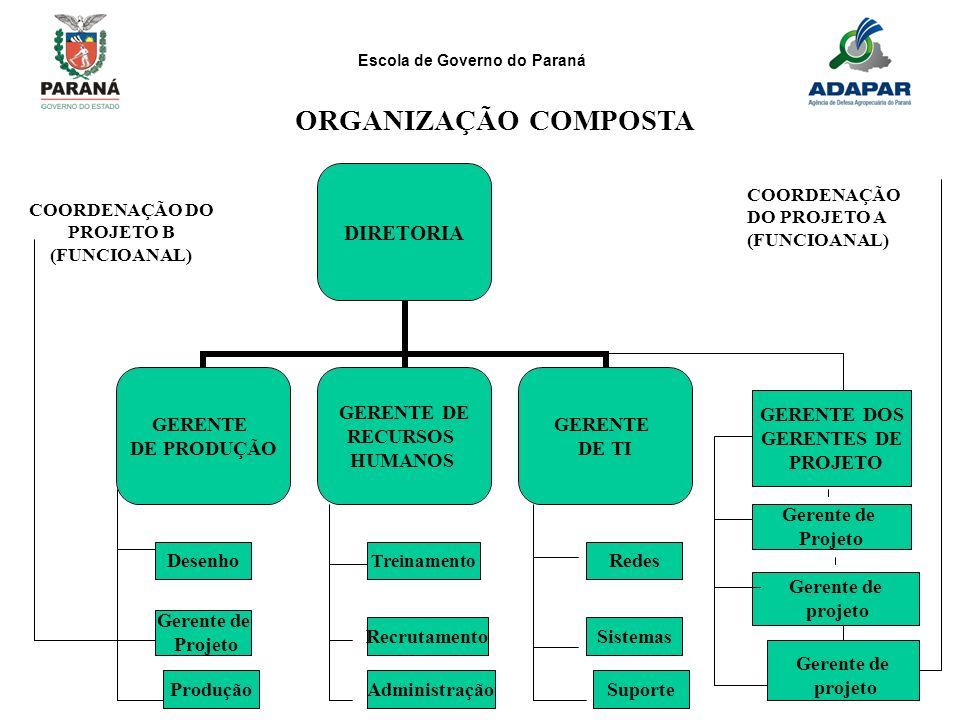Escola de Governo do Paraná 290 DIRETORIA GERENTE DE PRODUÇÃO GERENTE DE RECURSOS HUMANOS GERENTE DE TI DesenhoRedes Treinamento Gerente de Projeto Si