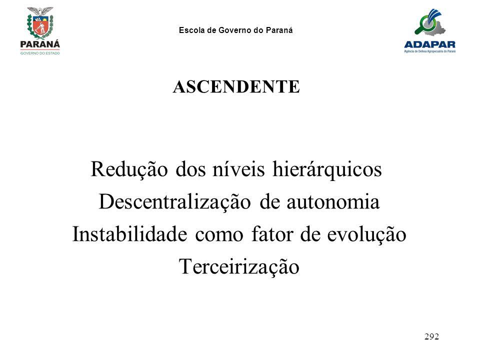 Escola de Governo do Paraná 292 ASCENDENTE Redução dos níveis hierárquicos Descentralização de autonomia Instabilidade como fator de evolução Terceiri