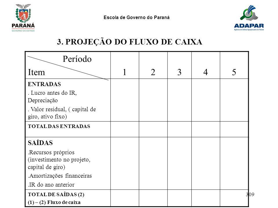 Escola de Governo do Paraná 309 Período Item12345 ENTRADAS. Lucro antes do IR, Depreciação. Valor residual, ( capital de giro, ativo fixo) TOTAL DAS E