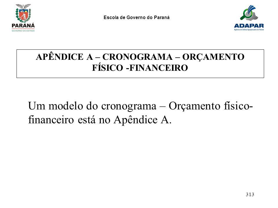 Escola de Governo do Paraná 313 APÊNDICE A – CRONOGRAMA – ORÇAMENTO FÍSICO -FINANCEIRO Um modelo do cronograma – Orçamento físico- financeiro está no