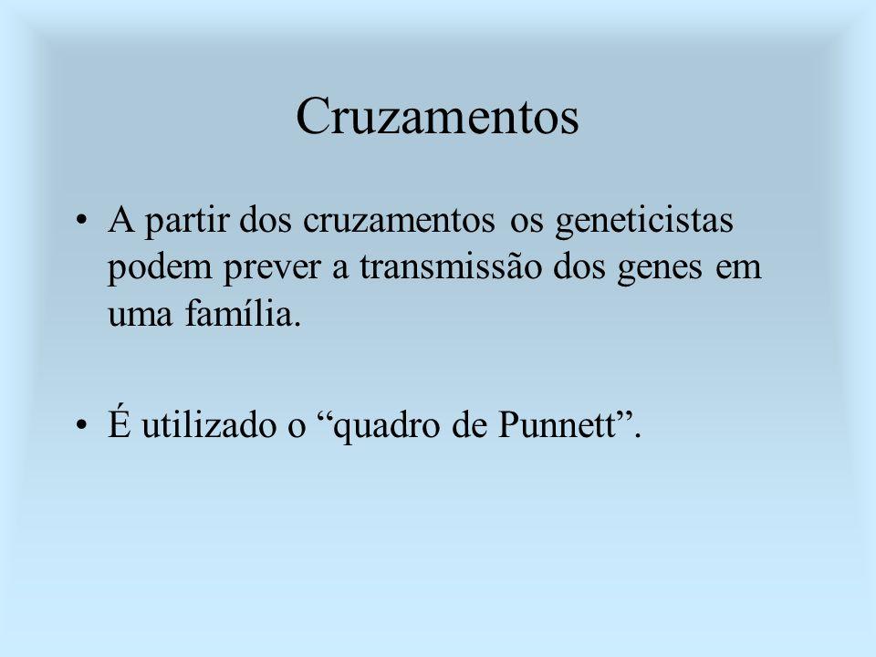 Cruzamentos A partir dos cruzamentos os geneticistas podem prever a transmissão dos genes em uma família.