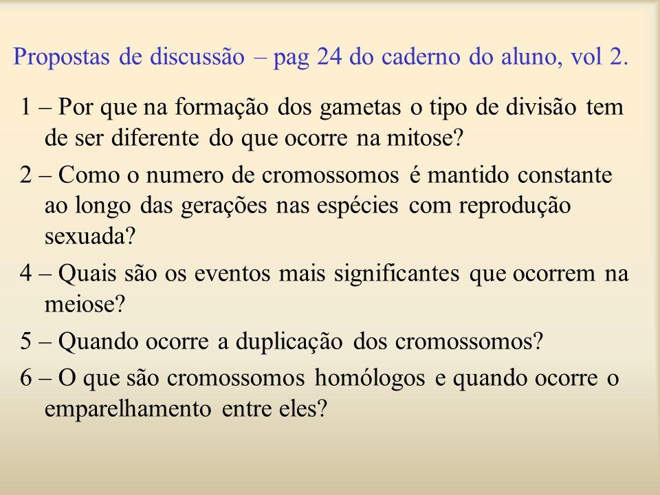 1 – Por que na formação dos gametas o tipo de divisão tem de ser diferente do que ocorre na mitose? 2 – Como o numero de cromossomos é mantido constan
