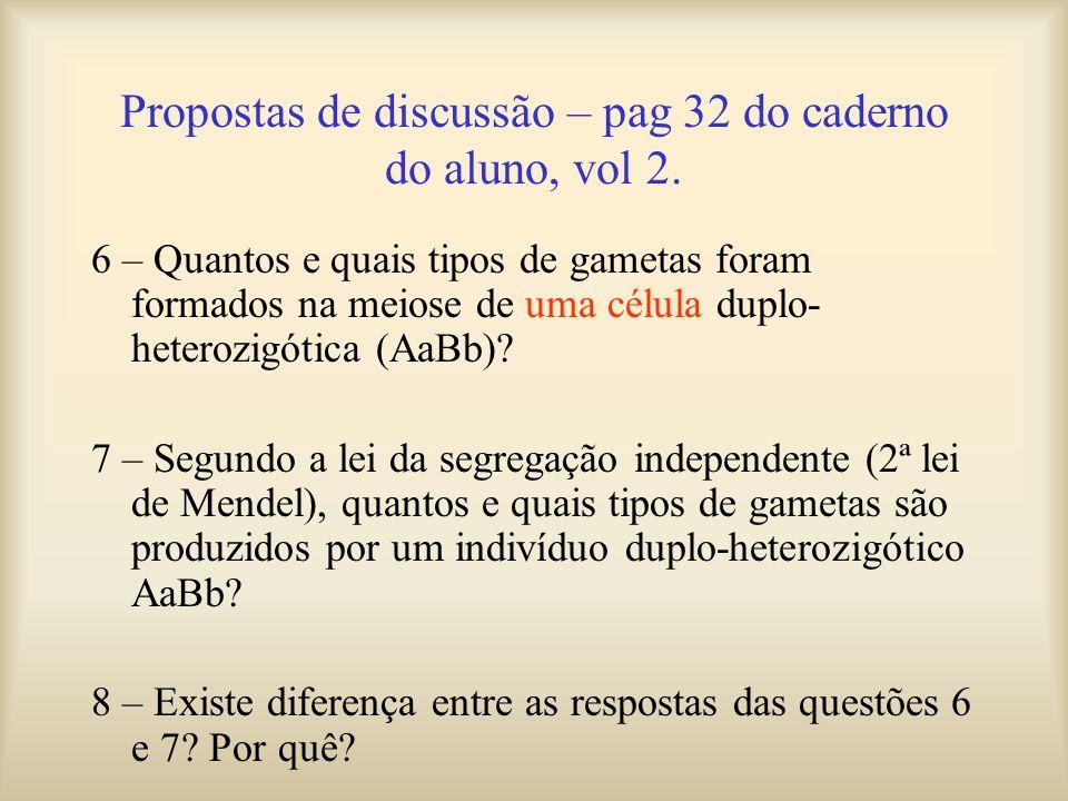 Propostas de discussão – pag 32 do caderno do aluno, vol 2. 6 – Quantos e quais tipos de gametas foram formados na meiose de uma célula duplo- heteroz