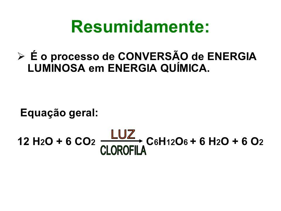 Resumidamente: É o processo de CONVERSÃO de ENERGIA LUMINOSA em ENERGIA QUÍMICA. Equação geral: 12 H 2 O + 6 CO 2 C 6 H 12 O 6 + 6 H 2 O + 6 O 2
