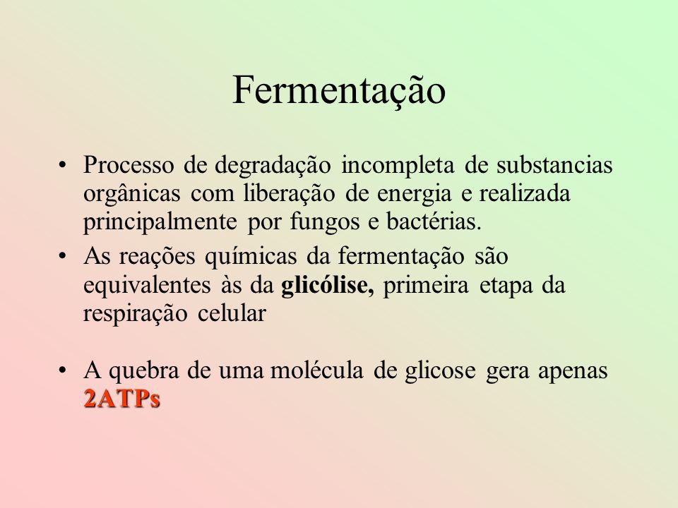 Fermentação Processo de degradação incompleta de substancias orgânicas com liberação de energia e realizada principalmente por fungos e bactérias. As