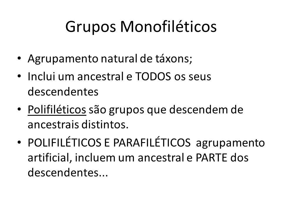 Grupos Monofiléticos Agrupamento natural de táxons; Inclui um ancestral e TODOS os seus descendentes Polifiléticos são grupos que descendem de ancestr