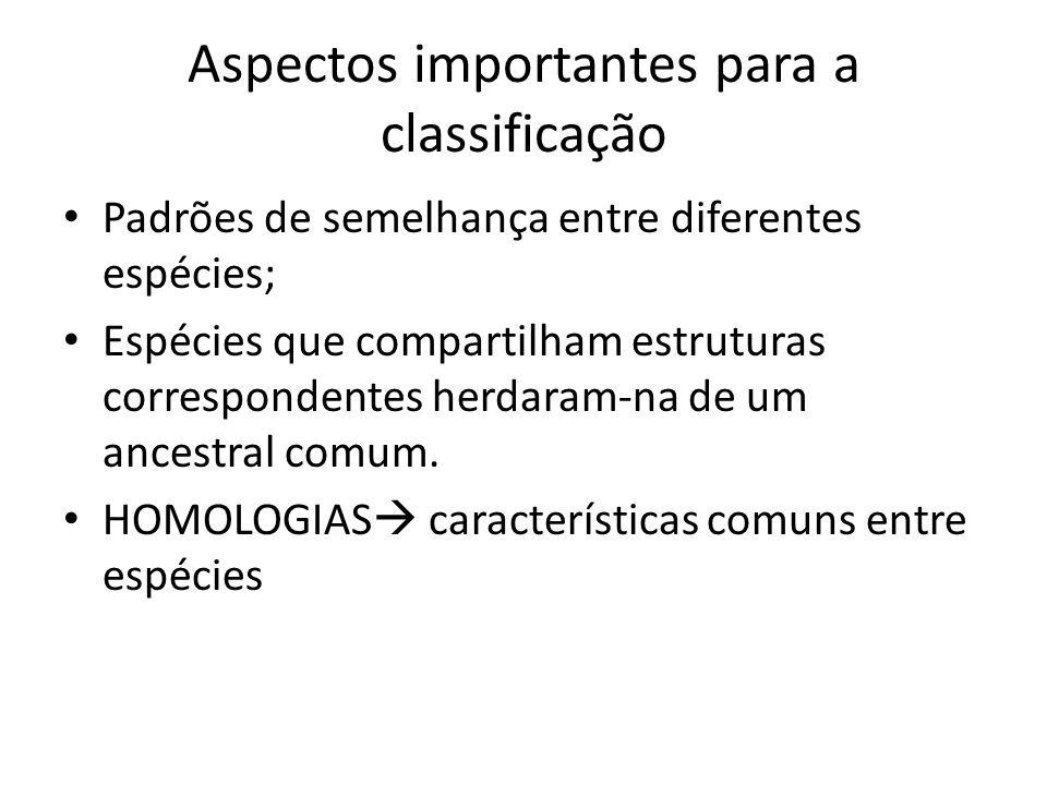 Aspectos importantes para a classificação Padrões de semelhança entre diferentes espécies; Espécies que compartilham estruturas correspondentes herdar