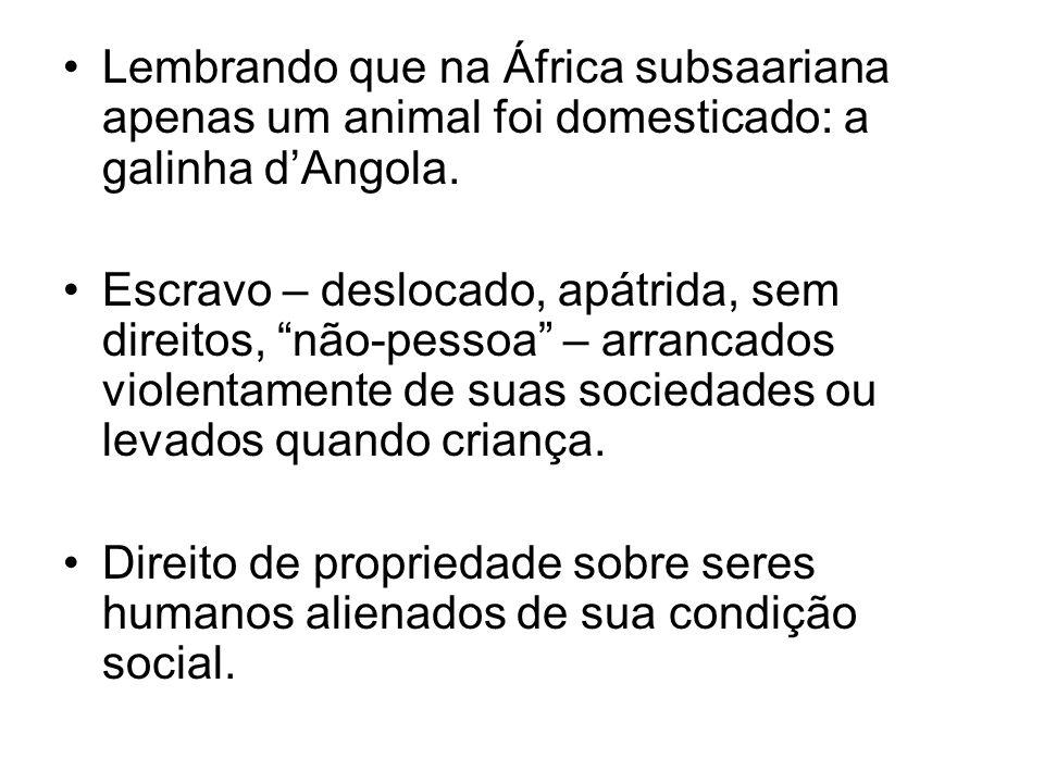 Lembrando que na África subsaariana apenas um animal foi domesticado: a galinha dAngola. Escravo – deslocado, apátrida, sem direitos, não-pessoa – arr