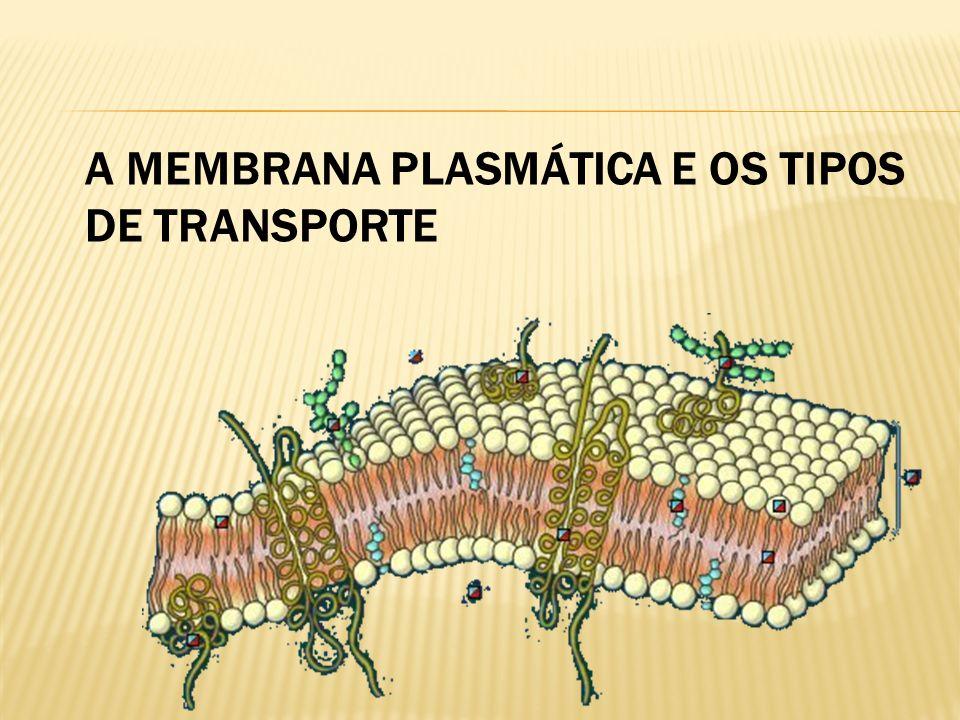 A MEMBRANA PLASMÁTICA E OS TIPOS DE TRANSPORTE