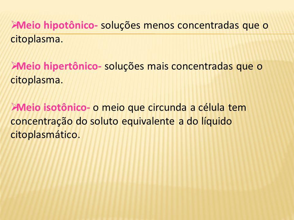 Meio hipotônico- soluções menos concentradas que o citoplasma. Meio hipertônico- soluções mais concentradas que o citoplasma. Meio isotônico- o meio q