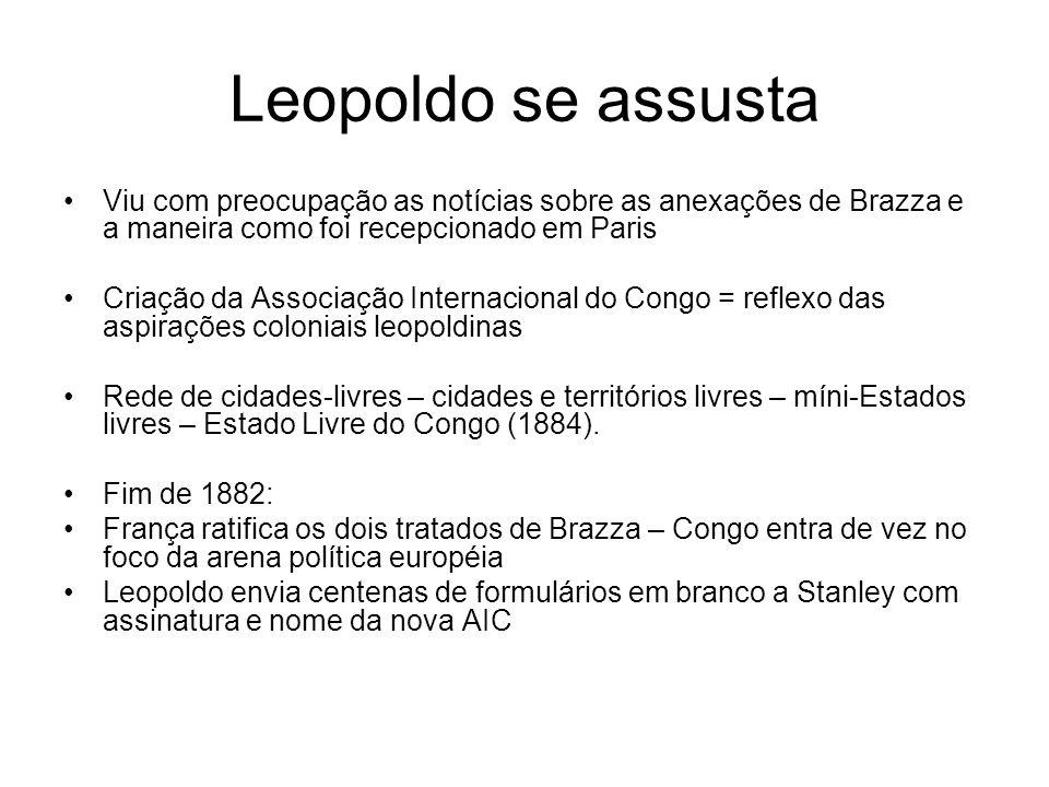 Leopoldo se assusta Viu com preocupação as notícias sobre as anexações de Brazza e a maneira como foi recepcionado em Paris Criação da Associação Inte