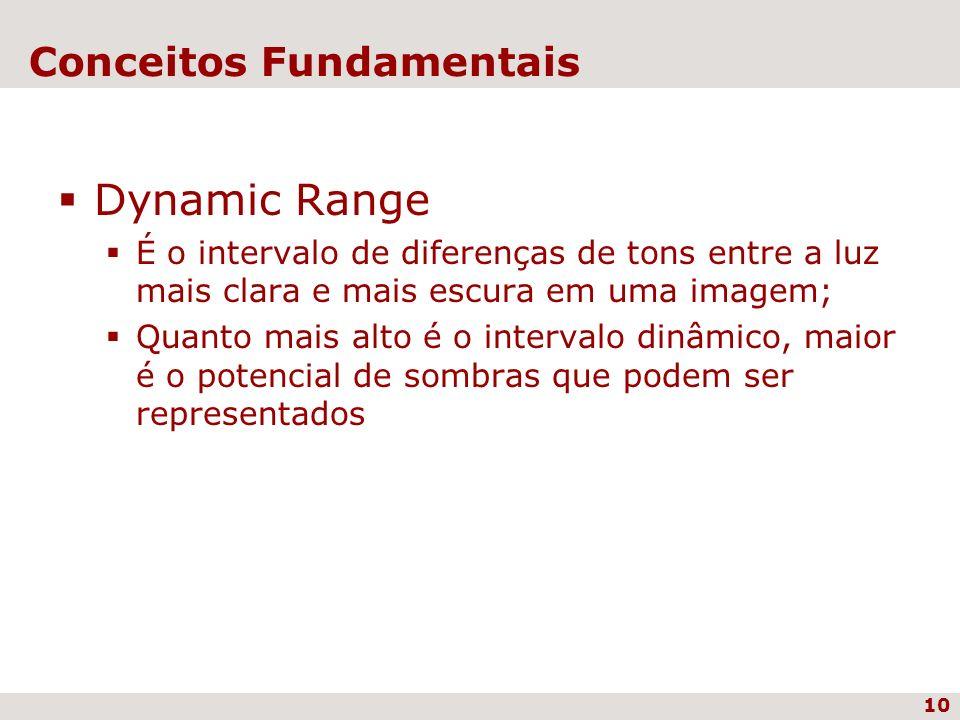 10 Conceitos Fundamentais Dynamic Range É o intervalo de diferenças de tons entre a luz mais clara e mais escura em uma imagem; Quanto mais alto é o i