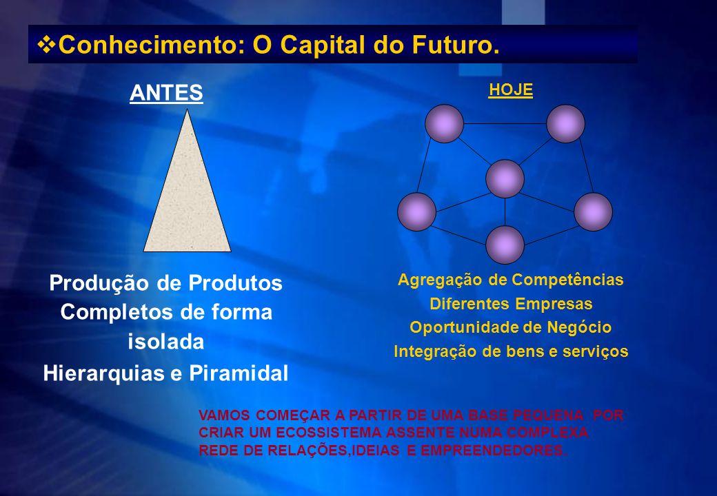 HOJE Agregação de Competências Diferentes Empresas Oportunidade de Negócio Integração de bens e serviços Conhecimento: O Capital do Futuro. ANTES Prod