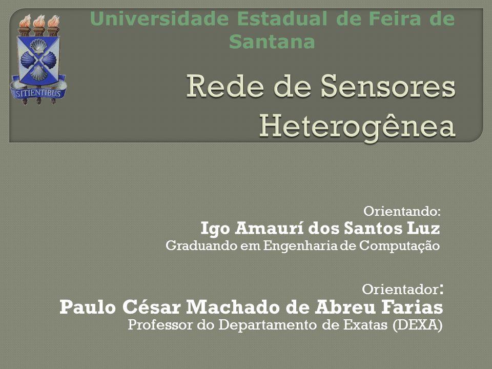 Orientador : Paulo César Machado de Abreu Farias Professor do Departamento de Exatas (DEXA) Universidade Estadual de Feira de Santana Orientando: Igo