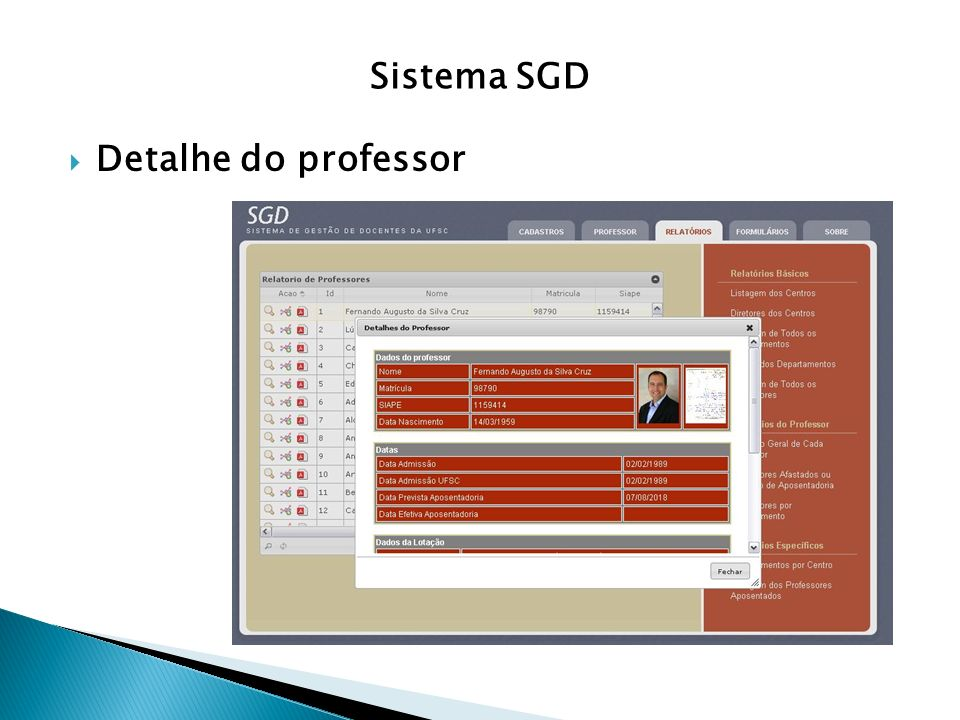 Sistema SGD Detalhe do professor
