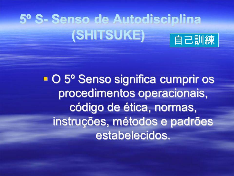 5º S- Senso de Autodisciplina (SHITSUKE) 5º S- Senso de Autodisciplina (SHITSUKE) O 5º Senso significa cumprir os procedimentos operacionais, código de ética, normas, instruções, métodos e padrões estabelecidos.