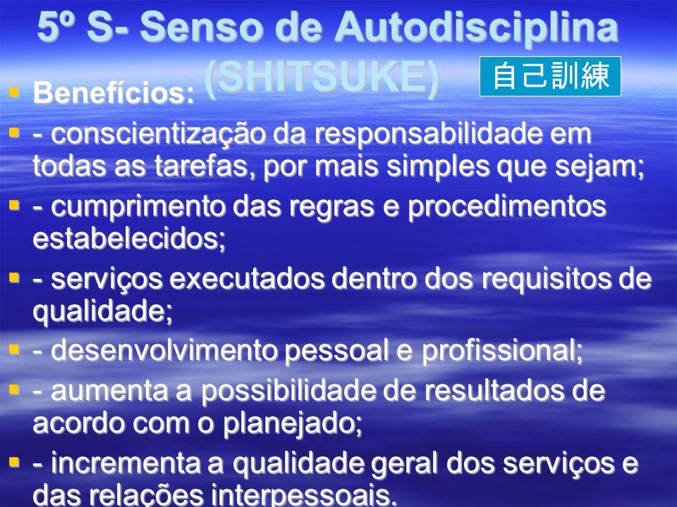 5º S- Senso de Autodisciplina (SHITSUKE) 5º S- Senso de Autodisciplina (SHITSUKE) Benefícios: Benefícios: - conscientização da responsabilidade em todas as tarefas, por mais simples que sejam; - conscientização da responsabilidade em todas as tarefas, por mais simples que sejam; - cumprimento das regras e procedimentos estabelecidos; - cumprimento das regras e procedimentos estabelecidos; - serviços executados dentro dos requisitos de qualidade; - serviços executados dentro dos requisitos de qualidade; - desenvolvimento pessoal e profissional; - desenvolvimento pessoal e profissional; - aumenta a possibilidade de resultados de acordo com o planejado; - aumenta a possibilidade de resultados de acordo com o planejado; - incrementa a qualidade geral dos serviços e das relações interpessoais.