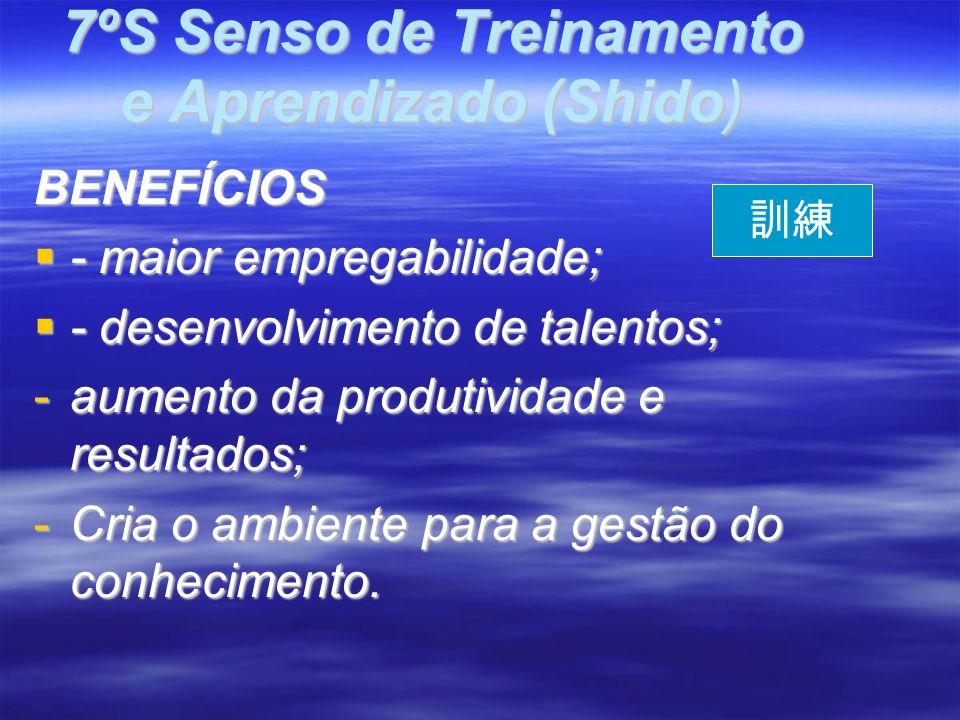 BENEFÍCIOS - maior empregabilidade; - maior empregabilidade; - desenvolvimento de talentos; - desenvolvimento de talentos; -aumento da produtividade e resultados; -Cria o ambiente para a gestão do conhecimento.