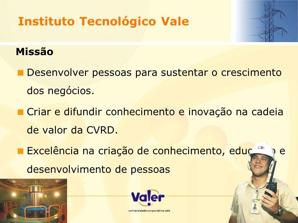 10 Modelo de visão estratégica Responsável por atrair investimentos em pesquisa, qualificar profissionais na expertise da cadeia de mineração, e disseminar a cultura da CVRD, através do Sistema Educacional Valer.