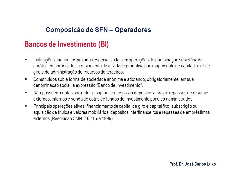 Prof. Dr. José Carlos Luxo Bancos de Investimento (BI) Instituições financeiras privadas especializadas em operações de participação societária de car