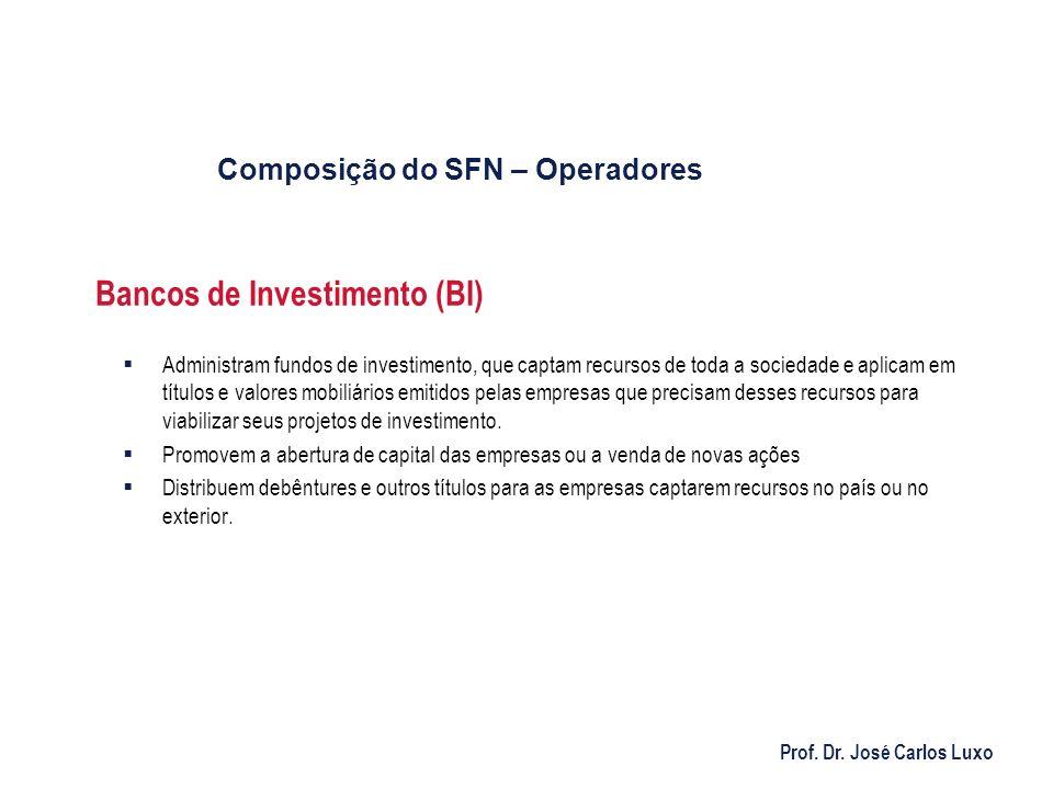 Prof. Dr. José Carlos Luxo Bancos de Investimento (BI) Administram fundos de investimento, que captam recursos de toda a sociedade e aplicam em título