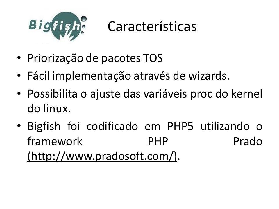 Características Priorização de pacotes TOS Fácil implementação através de wizards. Possibilita o ajuste das variáveis proc do kernel do linux. Bigfish