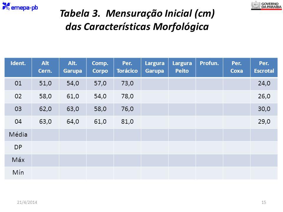 Tabela 3. Mensuração Inicial (cm) das Características Morfológica Ident.Alt Cern. Alt. Garupa Comp. Corpo Per. Torácico Largura Garupa Largura Peito P