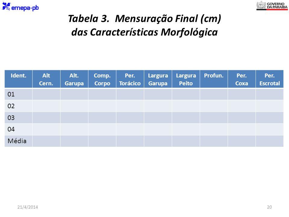 Tabela 3. Mensuração Final (cm) das Características Morfológica Ident.Alt Cern. Alt. Garupa Comp. Corpo Per. Torácico Largura Garupa Largura Peito Pro