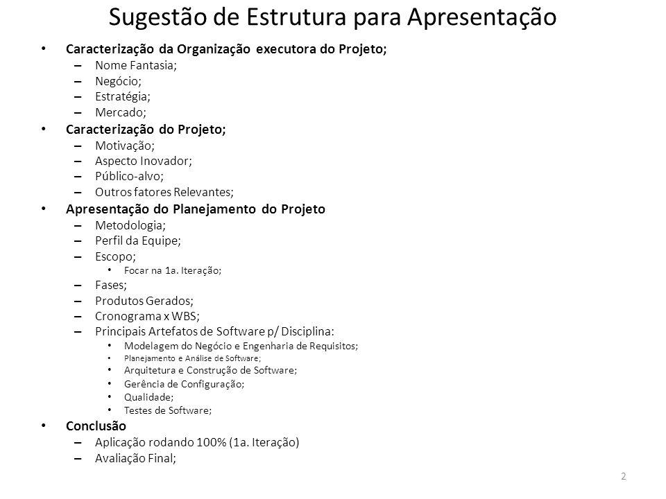 2 Sugestão de Estrutura para Apresentação Caracterização da Organização executora do Projeto; – Nome Fantasia; – Negócio; – Estratégia; – Mercado; Car